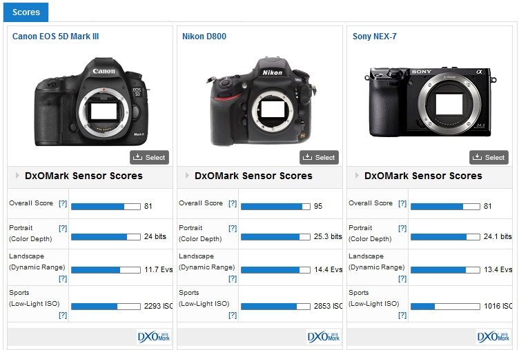Match entre le Sony Nex7, Le D800 de Nikon, et le Canon 5D Mark III